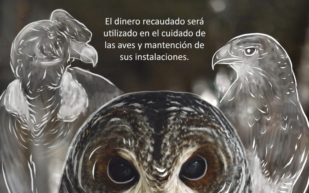 Campaña recaudación de fondos para el centro de rehabilitación de aves rapaces